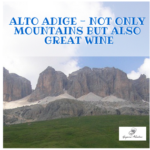 Alto Adige – Not only Mountains but also Great Wine