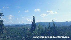 grapevineadventures.com_wineblab