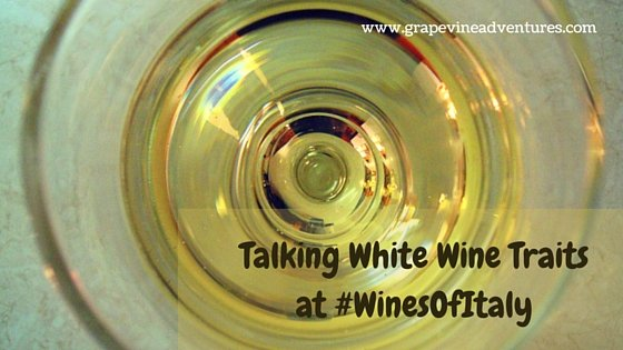 Talking White Wine Traits