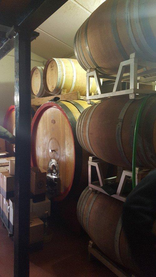 Barrel_Room_Val delle Corti_Radda