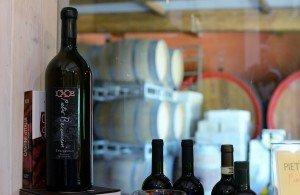 Tempranillo in San Miniato - Pietro Beconcini Winery