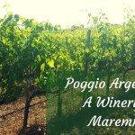 Poggio Argentiera – A Winery in Maremma