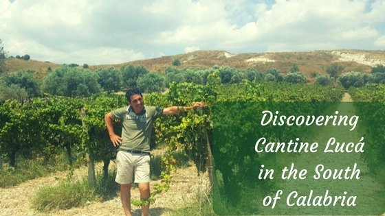 Discovering Cantine Lucà in the South of Calabria