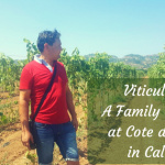 Viticulture – A Family Tradition at Cote di Franze in Calabria