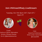 #WinesOfItaly LiveStream with Federica & Gianluca from Belvedere Winery