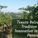 Tenuta Belvedere – Tradition and Innovation in Oltrepò Pavese