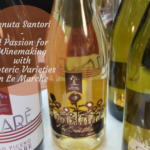 Tenuta Santori – Winemaking with Esoteric Varieties in Le Marche