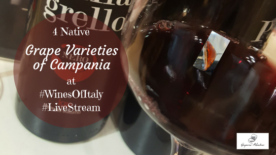 4 Native Grape Varieties of Campania at #WinesOfItaly #LiveStream