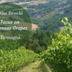Cantina Braschi – A Focus on Indigenous Grapes in Romagna