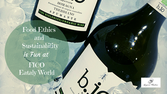Food Ethics and Sustainability is Fun at FICO Eataly World