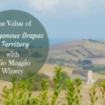 The Value of Indigenous Grapes and Territory with Rio Maggio Winery
