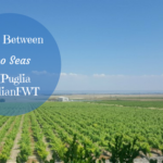 Wine Between Two Seas in Puglia – January 2018 at #ItalianFWT