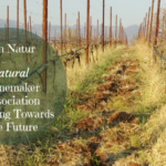 Vin Natur – A Natural Winemaker Association Looking Towards the Future