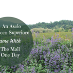 An Asolo Prosecco Superiore Came With the Mail One Day