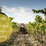 Vermentino by Antonella Corda – An expression of Sardinia Terroir