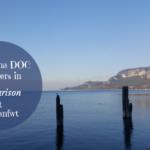 3 Lugana DOC Producers in Comparison at #Italianfwt