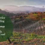 A Superior Sparkling Christmas With Bele Casel