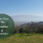 A New Face of the Sagrantino di Montefalco