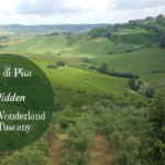 Terre di Pisa – A Hidden Wine Wonderland in Tuscany
