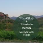 WinesOfItaly & Winestudio talking Montefioralle winery