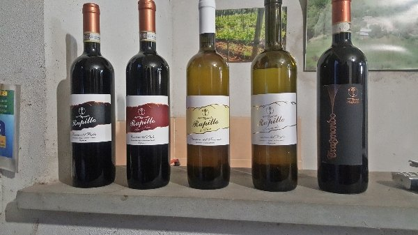 The Wines of Rapillo Winery