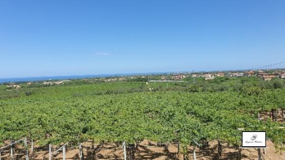 View_from_Feudo_Antico_Abruzzo