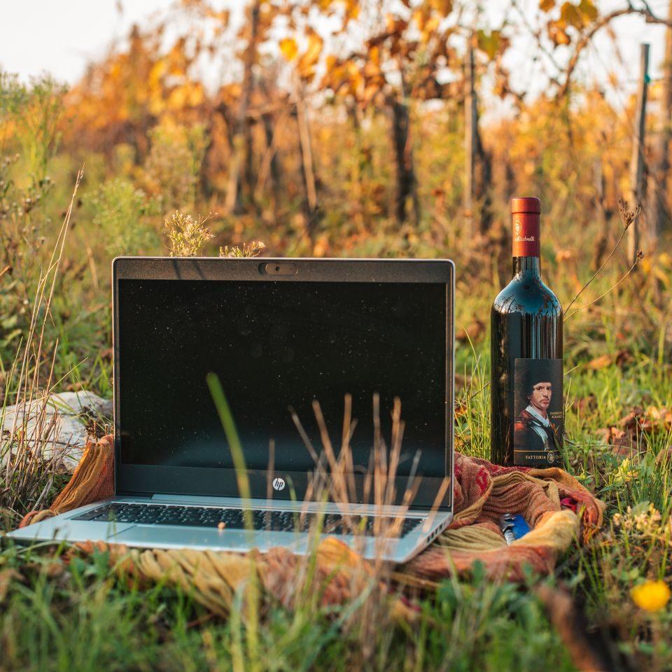 Katarina My Story Wine and Digital